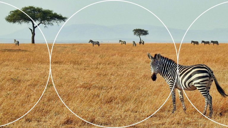 GroupM launches the Africa Media Index